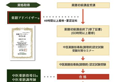 yakuzen-advisor-flow-min